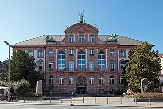 museum of natural history in Frankfurt
