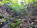 Fukiaicho, Chuo Ward, Kobe, Hyogo Prefecture 651-0058, Japan - panoramio (17).jpg