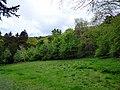 GOC Tring & Wendover Woods 064 Wendover Woods (34801704445).jpg