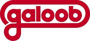 Galoob - Image: Galoob logo