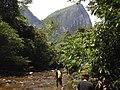 Garden Of Eden Mulu Valley Walk (124511919).jpeg