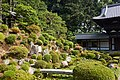 Gardens, Tofukuji Temple, May 2017 2.jpg