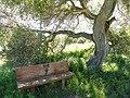 Garland Ranch Regional Park - Carmel Valley, CA - DSC06857.JPG