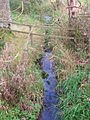 Garrier Burn Titwood.JPG
