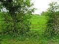 Gate, Greenhill - geograph.org.uk - 1869042.jpg