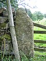 Gatepost and benchmark on Cow Close Lane - geograph.org.uk - 719184.jpg