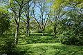 General view - Arnold Arboretum - DSC06719.JPG