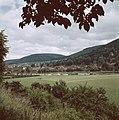 Gezicht op Miltenberg, Bestanddeelnr 255-9997.jpg
