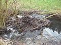 Giesel (Fulda); Gewässerlauf vor der Gemarkungsgrenze Istergiesel.JPG