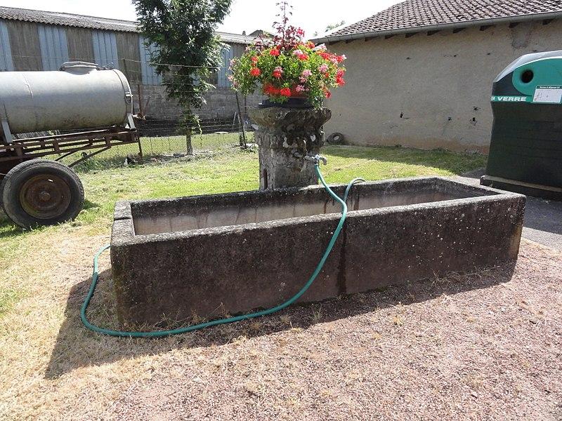 Gogney (M-et-M) fontaine