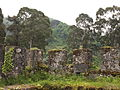 Gonio Fortress (DDohler 2011)-37.jpg