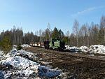 Gorokhovskoye peat railway TU4-818 with freight train.jpg