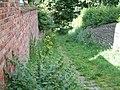 Gower Hey Path - geograph.org.uk - 1011550.jpg