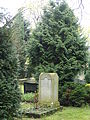 Grab Gerhard von Kügelgen (1).JPG