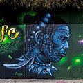 Graffiti Leo Wohlebstr (Freiburg) jm55914.jpg