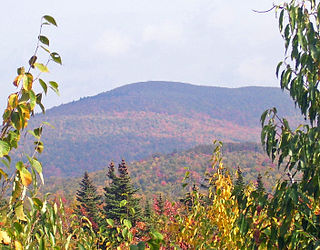 Graham Mountain (New York) Highest privately owned summit in New Yorks Catskill Mountains