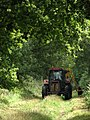 Grass cutting on bridleway leading NE to Hall Farm - geograph.org.uk - 544893.jpg
