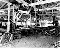 Great Western Lumber Co, Lake Ballinger, Aug 19, 1907 (CURTIS 246).jpeg