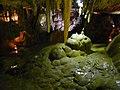 Grottes Bétharram 2012-05-20 (15).JPG
