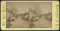 Group in the park, from Robert N. Dennis collection of stereoscopic views.png
