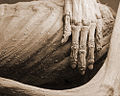 Guanajuato mummy 02.jpg