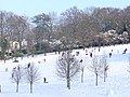 Guildford Golf Course Under Snow - geograph.org.uk - 1146380.jpg
