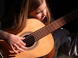 Sound box - In the guitar, the sound box is the hollowed wooden structure that constitutes the body of the instrument.