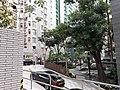 HK 灣仔 Wan Chai 聖佛蘭士街 St. Francis Street near 星街 Star Street March 2020 SS2 13.jpg
