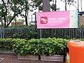 HK CWB 銅鑼灣 Causeway Bay 維多利亞公園 Victoria Park 香港花卉展覽 Hong Kong Flower Show March 2019 SSG 10.jpg