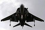 Harrier (5132433191).jpg