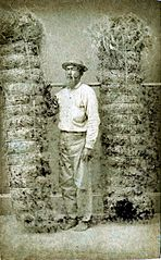 Hawaiian Grass Dealer, photograph by Menzies Dickson.jpg