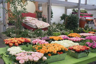 Hemer-Landesgartenschau-Blumenschau Rosen.JPG