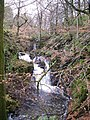 High Fall - geograph.org.uk - 648467.jpg