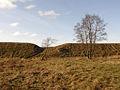 Hill Fort in Rakau, 15th century.jpg