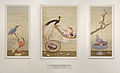 Histoire Naturelle 1810.jpg