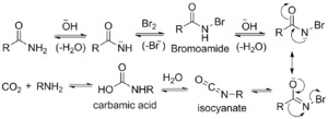 Hofmann rearrangement - Image: Hoffman rearrangement