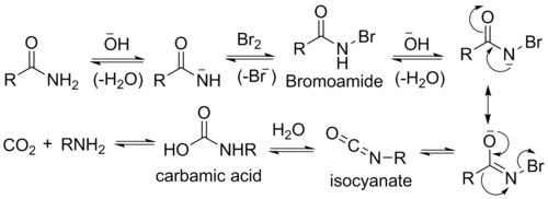 Hofmann rearrangement - Wikipedia