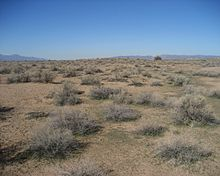 Hohokam Pima National Monument.jpg