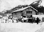 Horse and carriage with Ed S Orr Stage Line cabin in background, Alaska, circa 1907 (AL+CA 4769).jpg