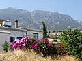 Houses with Hills - Lapta (Lapithos) - Turkish Republic of Northern Cyprus (28526573702).jpg