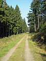 Hundebruch-Hangweg.jpg