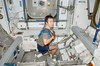 ISS-20 Koichi Wakata exercises using the IRED equipment in the Harmony node.jpg