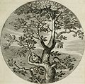Iacobi Catzii Silenus Alcibiades, sive Proteus- (1618) (14749598255).jpg