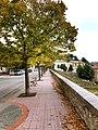 Il Viale di Piana degli Albanesi.jpg