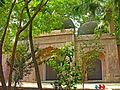 India-0366 - Flickr - archer10 (Dennis).jpg