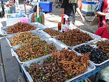 Large baskets of insects and scorpions at a market.