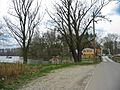 Insel Rott am Rhein IMG 0342-7.jpg