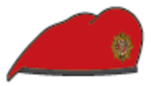 Military Police Corps (Ireland)
