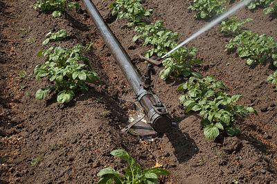 "Irrigation system ""Perrot""-sprinkler and end fitting"