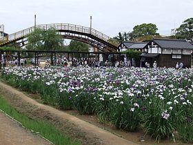 潮来市 - Wikipedia